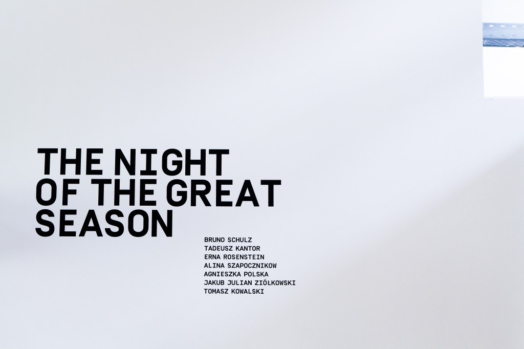 Mulhouse - Kunsthalle - The Night of the Great Season (54)