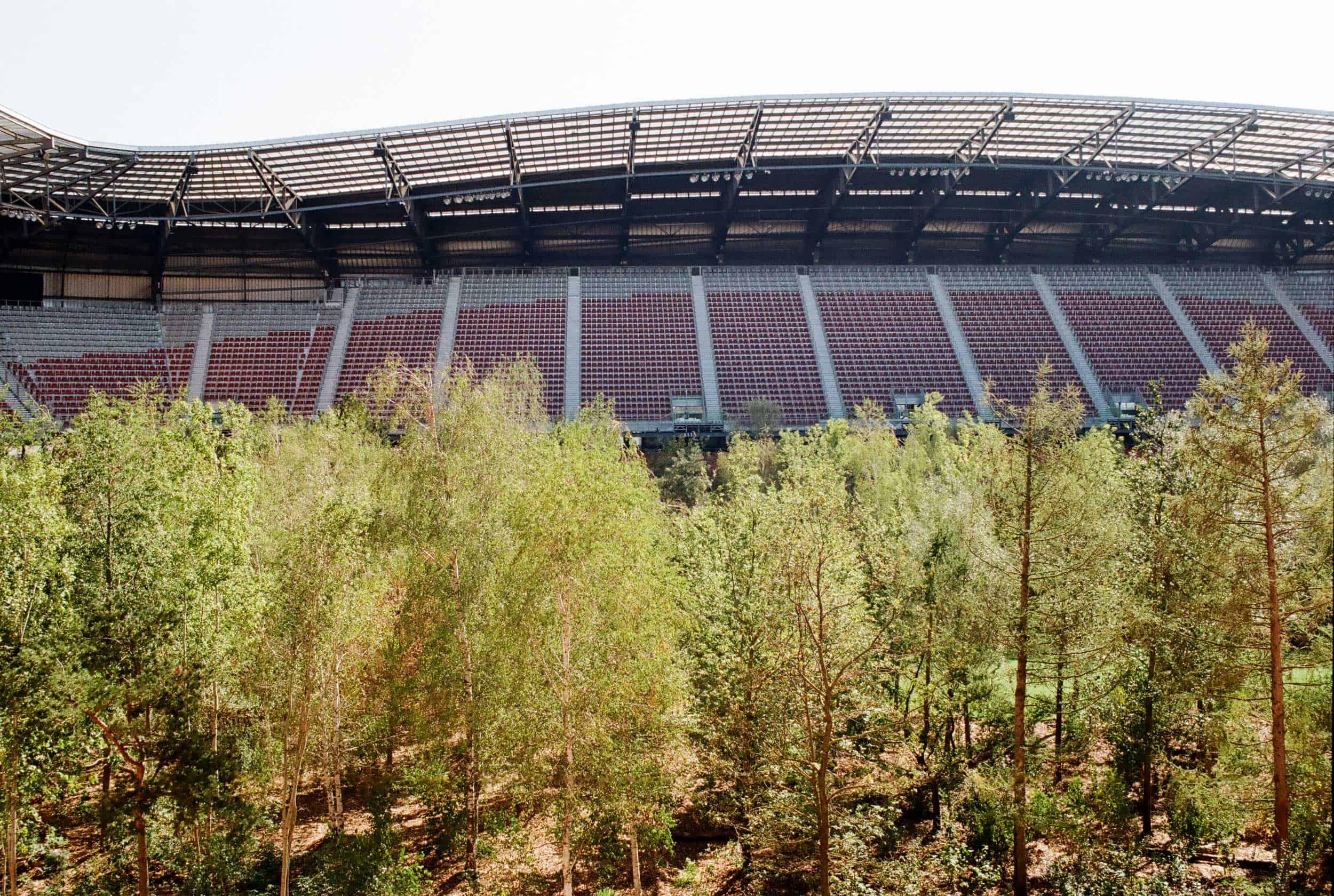 For Forest, Klagenfurt, Photo: Patrycja Głusiec