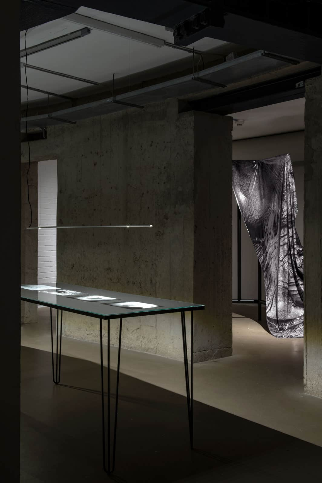 On the left: Netta Laufer, 35 cm, 2017–2020, photographs, exhibition copies. In the background: Tom Swoboda, Animal Space – The skin of an elephant, metal object, photo print of an elephant skin. Photo by Małgorzata Kujda, © Wrocław Contemporary Museum, 2020.