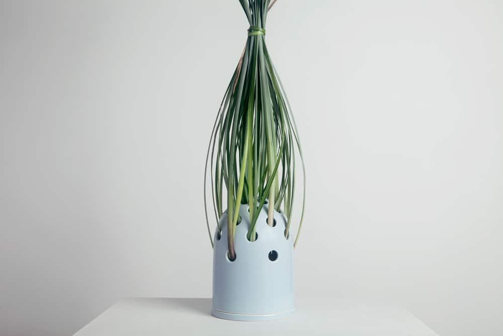 Fly's Eye Vase, Krafla