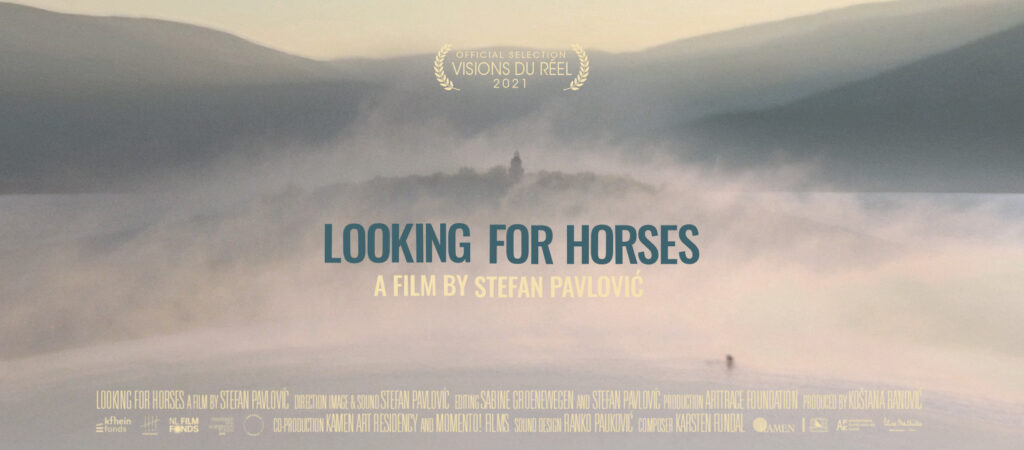Looking for horses by Stefan Pavlović ©momento